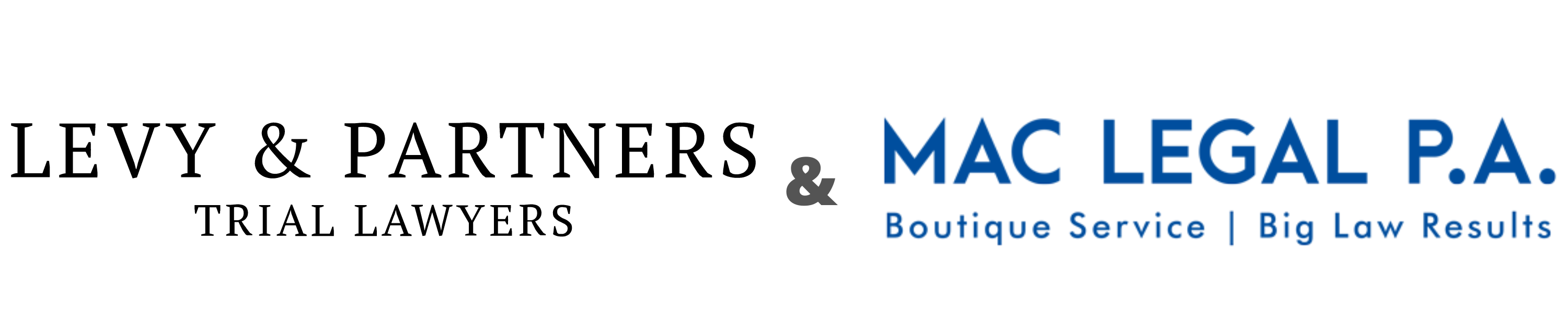 Levy & Partners